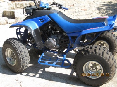 Picture of 1990 Yamaha Warrior 350