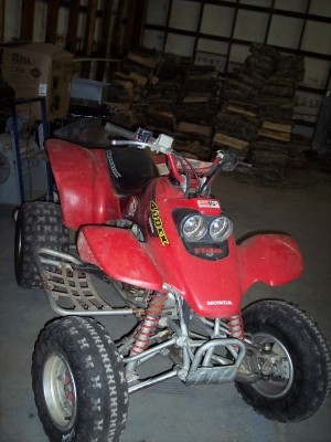 Picture of 1999 Honda Sportrax 400