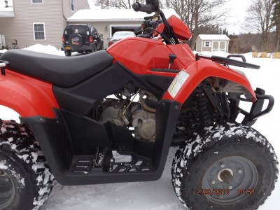 Picture of 2010 Arctic Cat 300 250