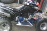 Picture of 2001 Honda Sportrax 400