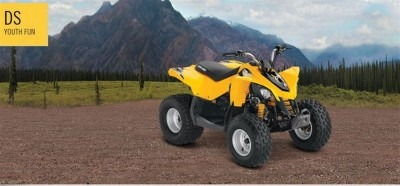 Picture of 2014 Can-Am Bombardier DS 90