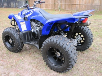 Picture of 2009 Yamaha Wolverine 450