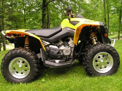 Picture of 2007 Can-Am Bombardier Renegade 800
